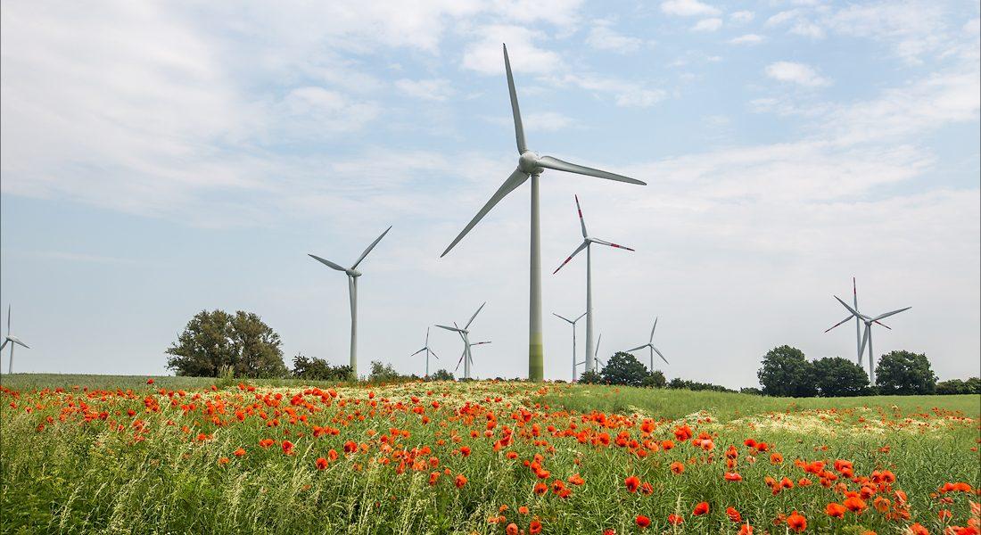 Недостатки ветряных устройств
